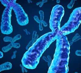 NIPT testovi - kromosomski poremećaji