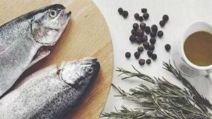 Prehrana za trudnice i unos plave ribe