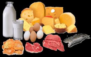 Hrana koja u sebi ima vitamin B12